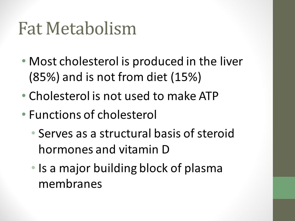 Fat Metabolism Most cholesterol is produced in the liver (85%) and is not from diet (15%) Cholesterol is not used to make ATP Functions of cholesterol Serves as a structural basis of steroid hormones and vitamin D Is a major building block of plasma membranes