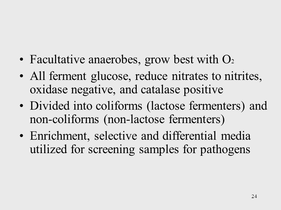 24 Facultative anaerobes, grow best with O 2 All ferment glucose, reduce nitrates to nitrites, oxidase negative, and catalase positive Divided into co