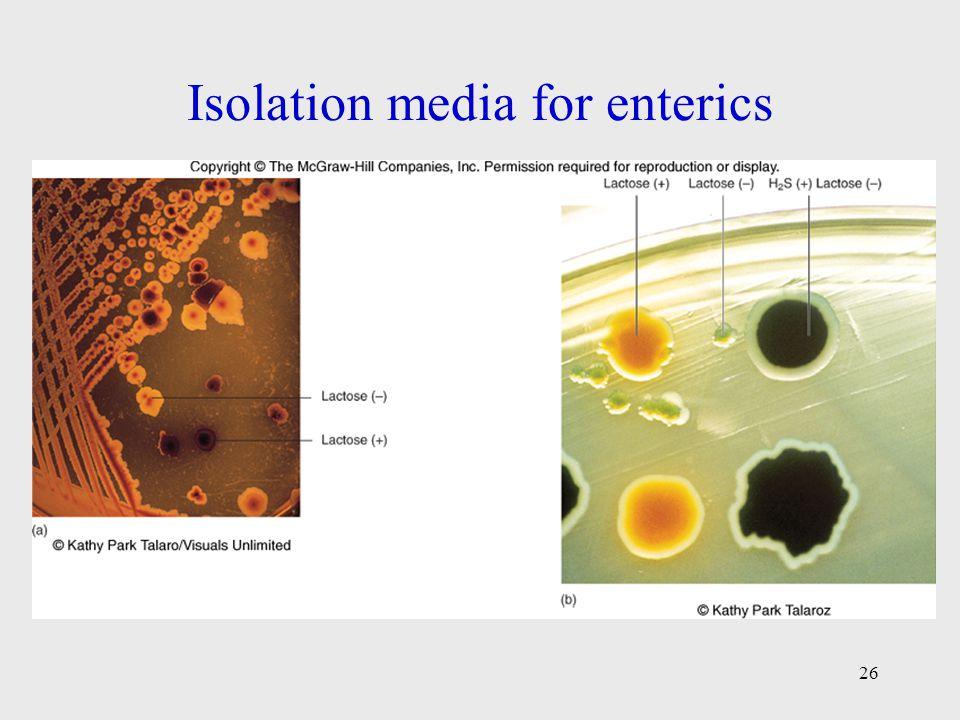Isolation media for enterics 26