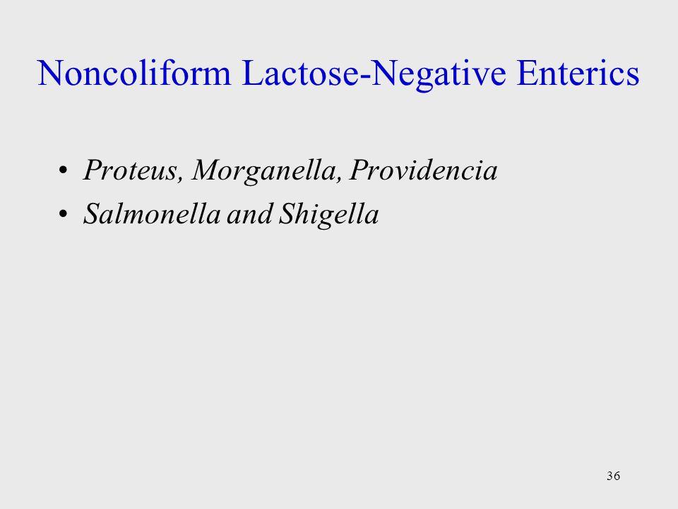 36 Noncoliform Lactose-Negative Enterics Proteus, Morganella, Providencia Salmonella and Shigella