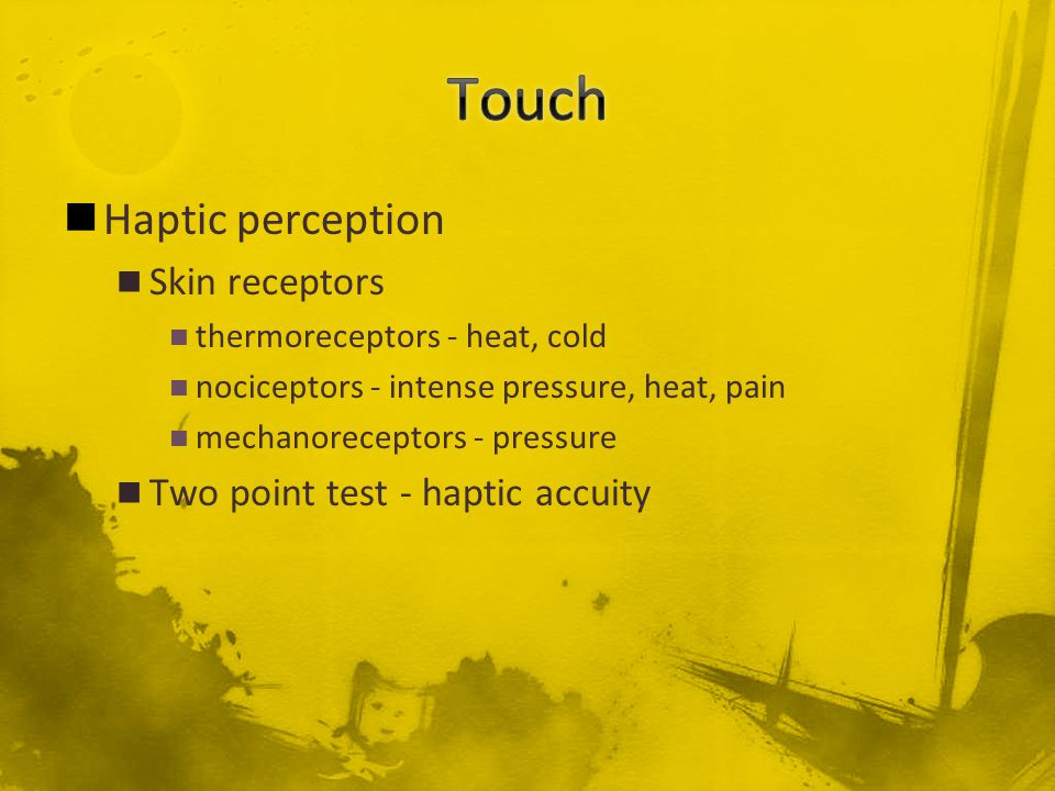 Haptic perception Skin receptors thermoreceptors - heat, cold nociceptors - intense pressure, heat, pain mechanoreceptors - pressure Two point test - haptic accuity