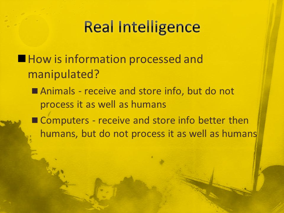 How is information processed and manipulated.