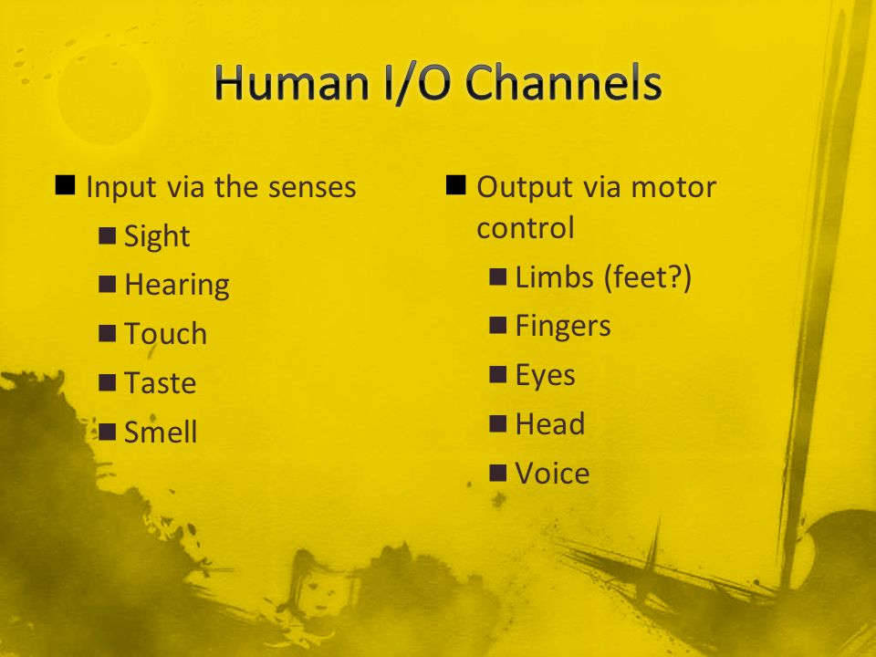 Input via the senses Sight Hearing Touch Taste Smell Output via motor control Limbs (feet ) Fingers Eyes Head Voice