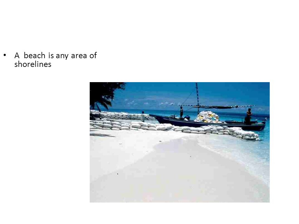 A beach is any area of shorelines