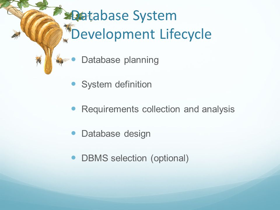 Database System Development Lifecycle Application design Prototyping (optional) Implementation Data conversion and loading Testing Operational maintenance