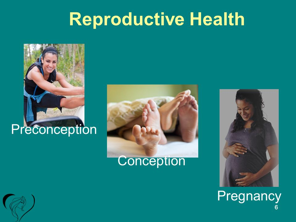 Reproductive Health Pregnancy Conception Preconception 6