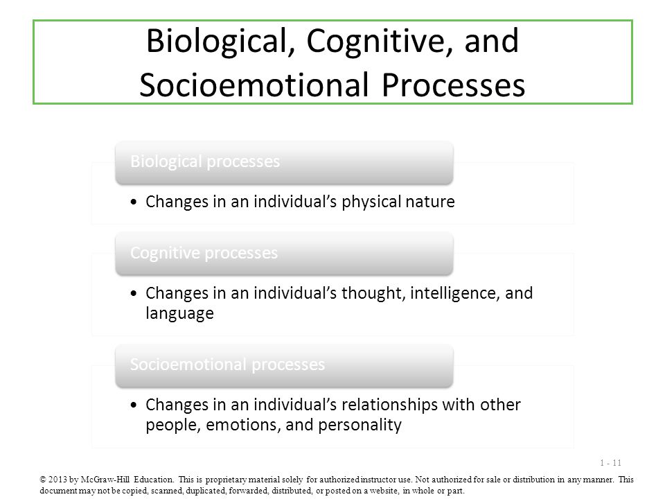 1 - 11 Biological, Cognitive, and Socioemotional Processes © 2013 by McGraw-Hill Education. This is proprietary material solely for authorized instruc