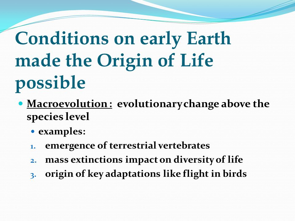 Conditions on early Earth made the Origin of Life possible Macroevolution : evolutionary change above the species level examples: 1. emergence of terr