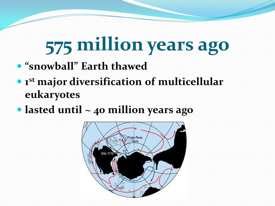 "575 million years ago ""snowball"" Earth thawed 1 st major diversification of multicellular eukaryotes lasted until ~ 40 million years ago"