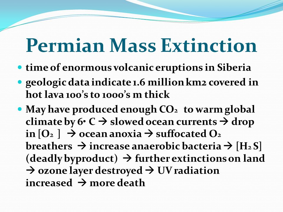 Permian Mass Extinction time of enormous volcanic eruptions in Siberia geologic data indicate 1.6 million km2 covered in hot lava 100's to 1000's m th