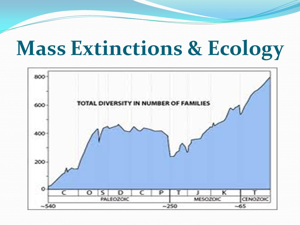 Mass Extinctions & Ecology