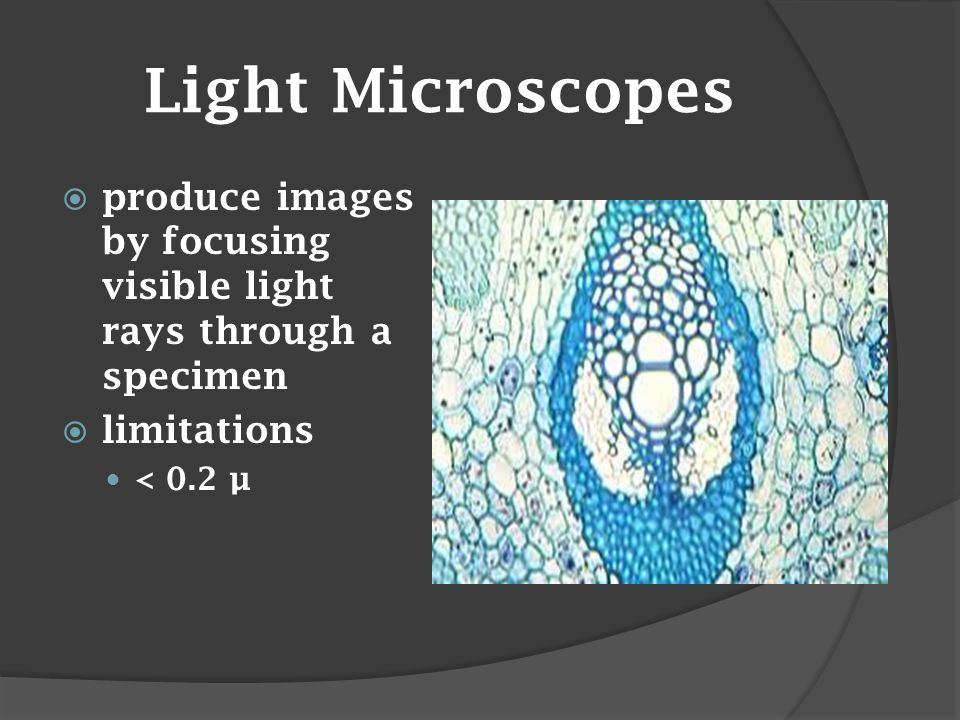 Light Microscopes  produce images by focusing visible light rays through a specimen  limitations < 0.2 µ