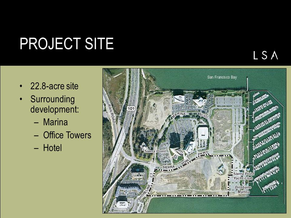 22.8-acre site Surrounding development: –Marina –Office Towers –Hotel PROJECT SITE