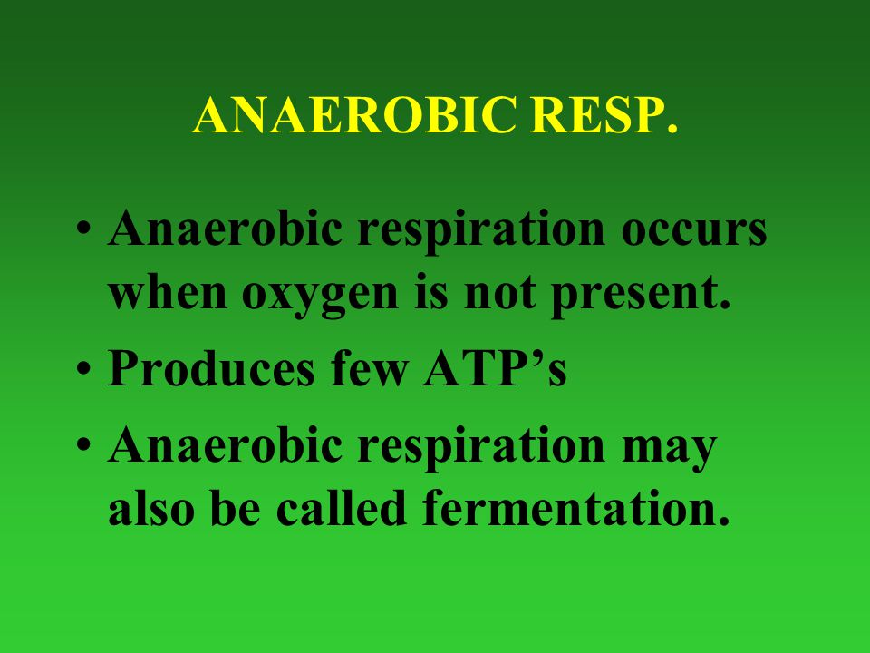 ANAEROBIC RESP. Anaerobic respiration occurs when oxygen is not present.