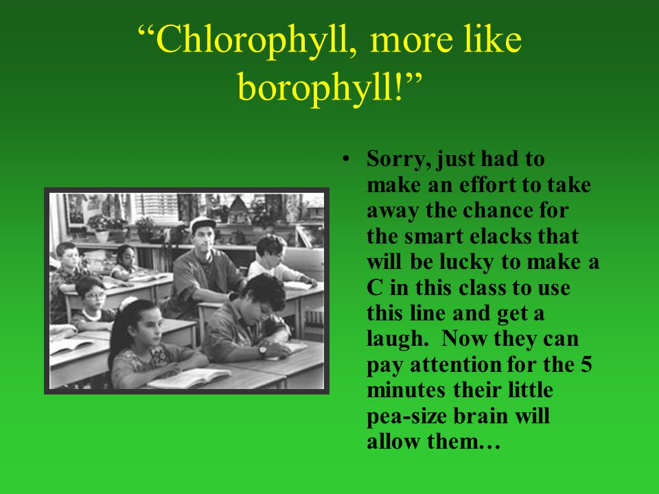 Chlorophyll, more like borophyll! Sorry, just had to make an effort to take away the chance for the smart elacks that will be lucky to make a C in this class to use this line and get a laugh.