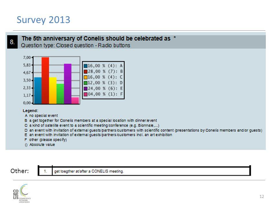 Survey 2013 12 Other:
