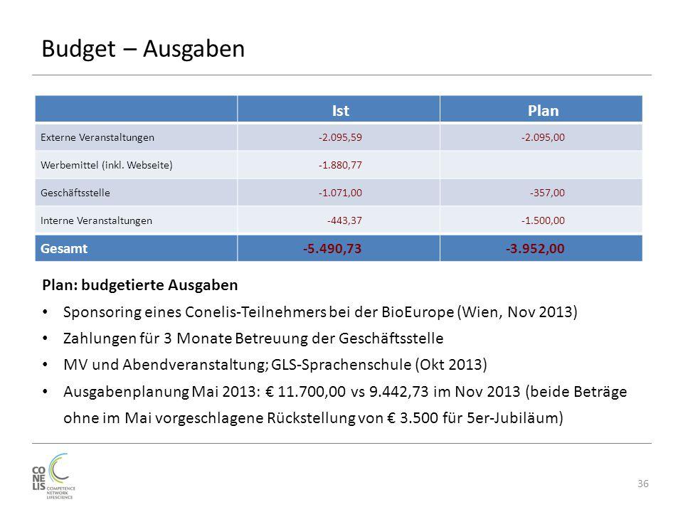 Budget – Ausgaben IstPlan Externe Veranstaltungen-2.095,59-2.095,00 Werbemittel (inkl.