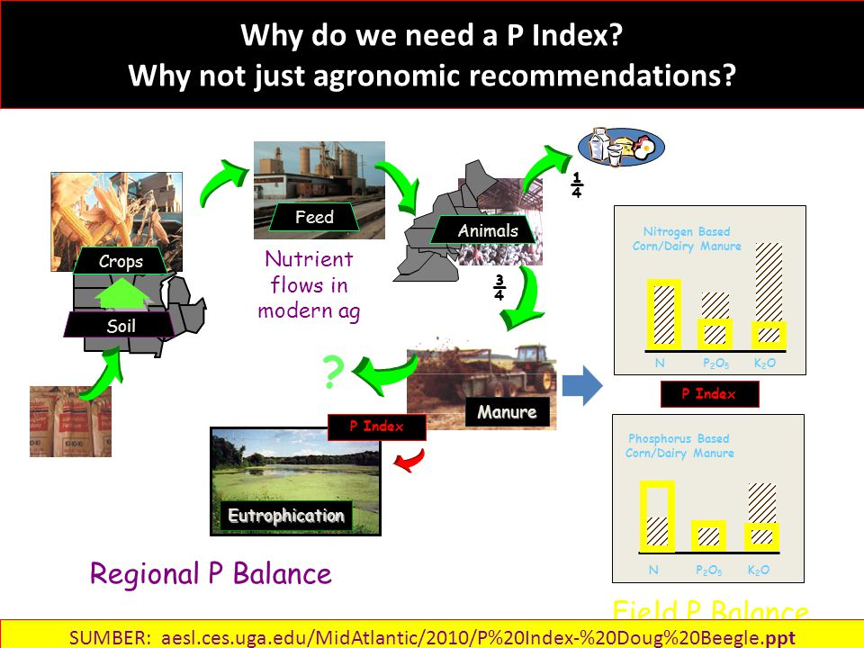 Why do we need a P Index. Why not just agronomic recommendations.