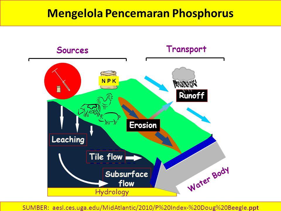 Mengelola Pencemaran Phosphorus Subsurface flow Tile flow Leaching Sources Transport Erosion Runoff N P K Hydrology Water Body SUMBER: aesl.ces.uga.edu/MidAtlantic/2010/P%20Index-%20Doug%20Beegle.ppt