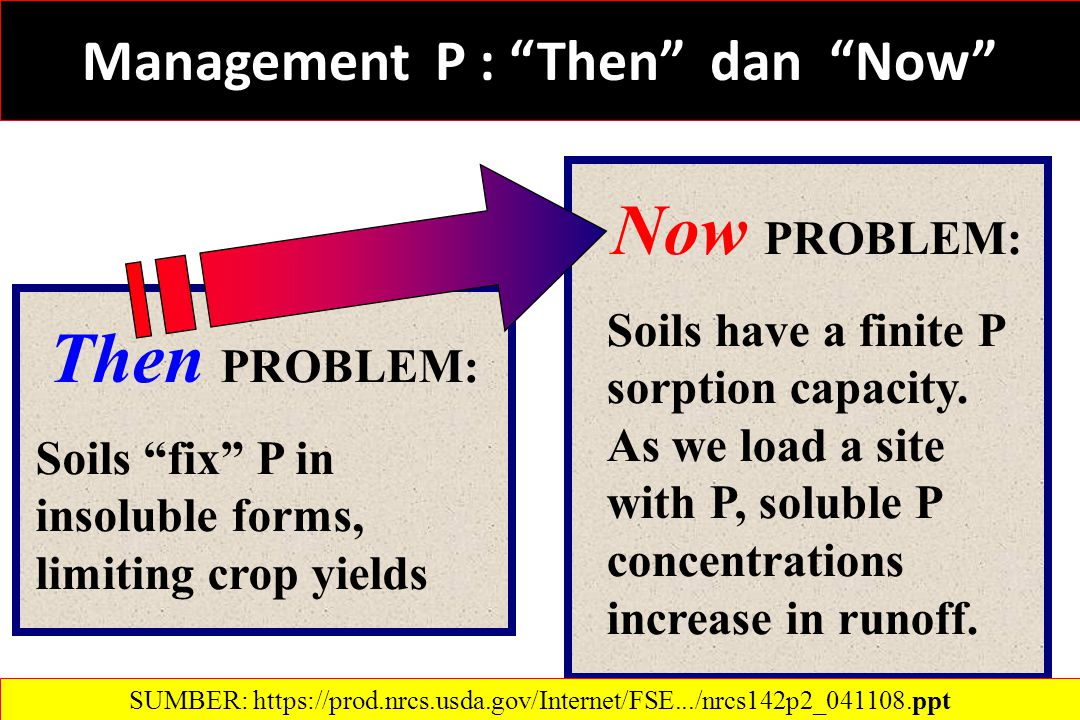 Management P : Then dan Now Then PROBLEM: Soils fix P in insoluble forms, limiting crop yields Now PROBLEM: Soils have a finite P sorption capacity.