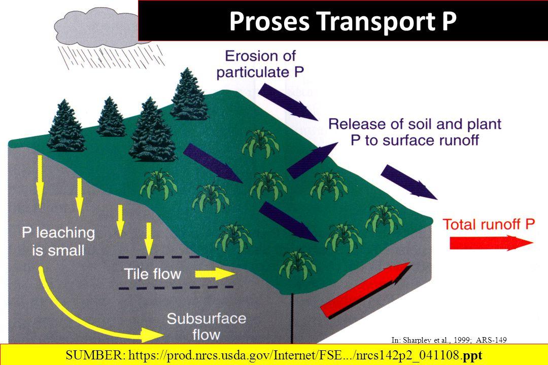 Proses Transport P In: Sharpley et al., 1999; ARS-149 SUMBER: https://prod.nrcs.usda.gov/Internet/FSE.../nrcs142p2_041108.ppt