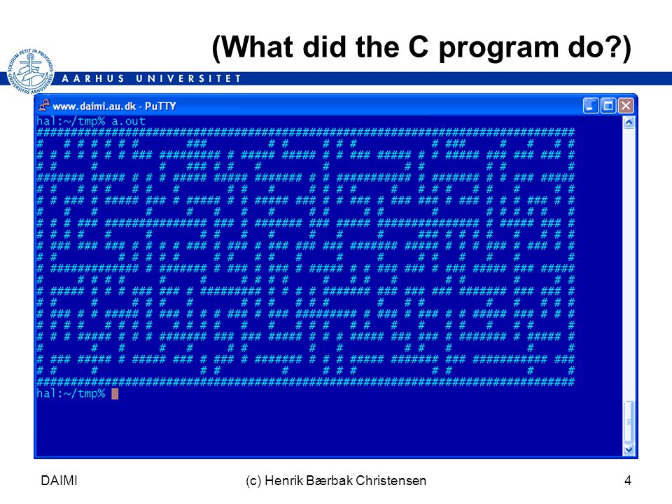 DAIMI(c) Henrik Bærbak Christensen4 (What did the C program do )