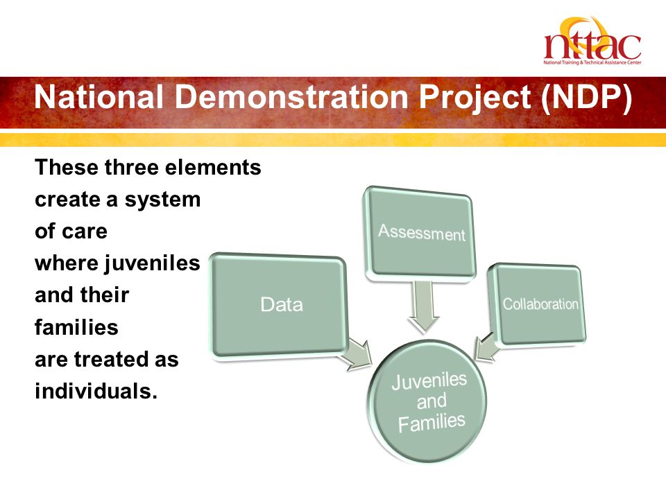 National Demonstration Project (NDP) These three elements create a system of care where juveniles and their families are treated as individuals.