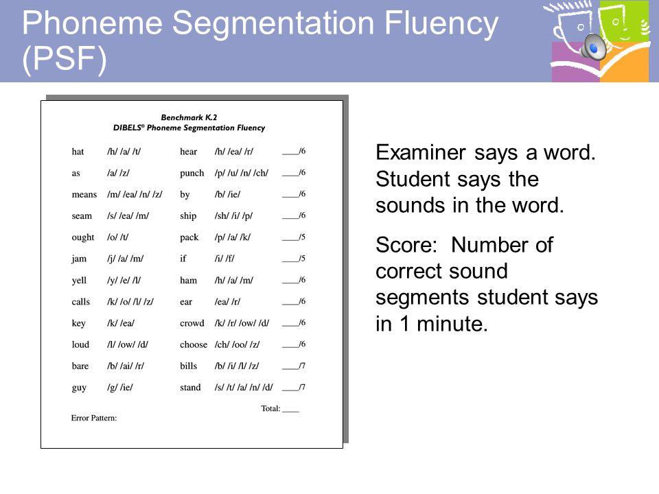 11 When Should Phonemic Awareness be Taught.