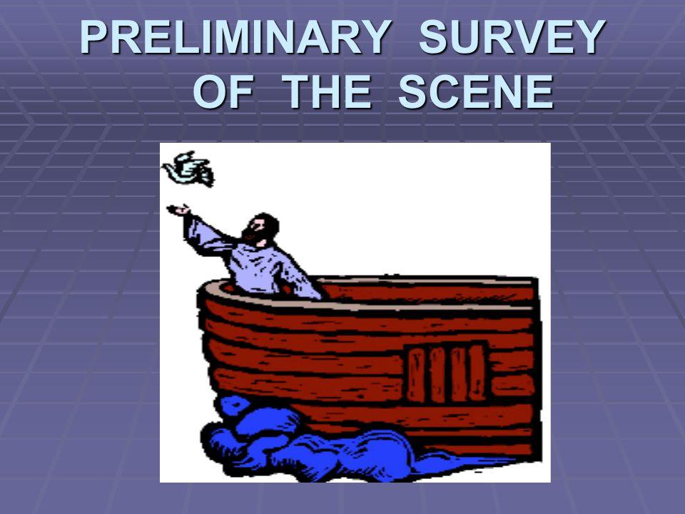 PRELIMINARY SURVEY OF THE SCENE