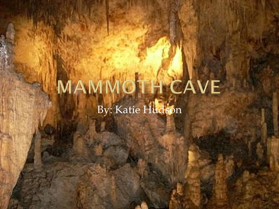 Mammoth Cave was established July 1941 to keep the cave system preserved and to protect natural areas.