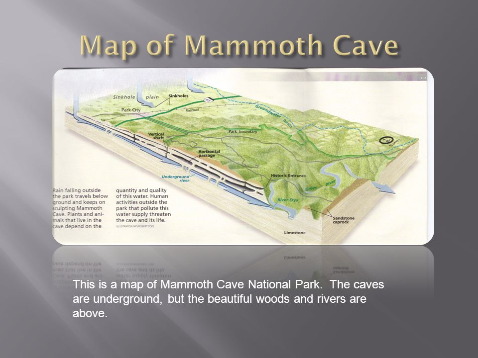 This is a map of Mammoth Cave National Park.