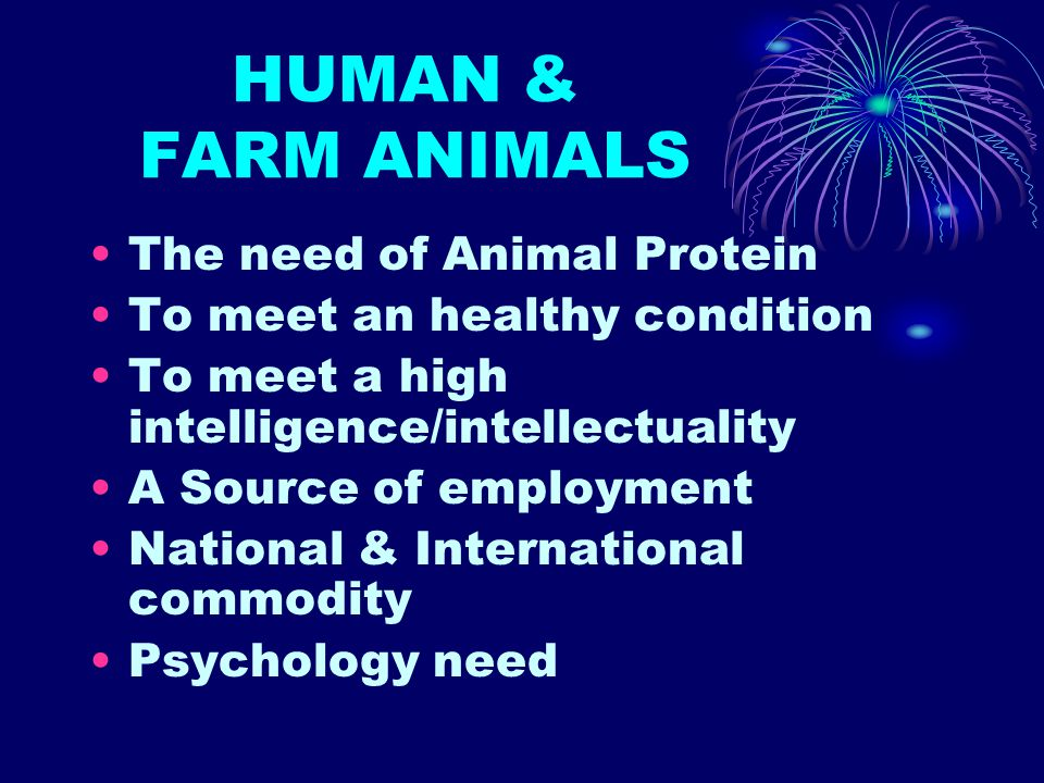 HUMAN & FARM ANIMALS The need of Animal Protein To meet an healthy condition To meet a high intelligence/intellectuality A Source of employment Nation