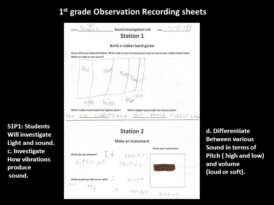 1 st grade Observation Recording sheets d.