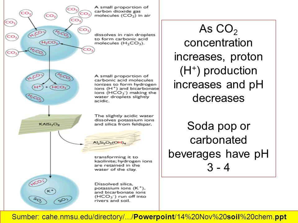 As CO 2 concentration increases, proton (H + ) production increases and pH decreases Soda pop or carbonated beverages have pH Sumber: cahe.nmsu.edu/directory/.../Powerpoint/14%20Nov%20soil%20chem.ppt‎