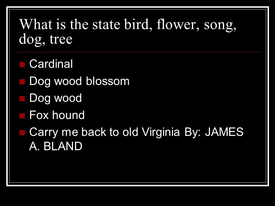 What is the state bird, flower, song, dog, tree Cardinal Dog wood blossom Dog wood Fox hound Carry me back to old Virginia By: JAMES A.