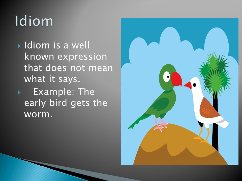  Idiom is a well known expression that does not mean what it says.  Example: The early bird gets the worm.