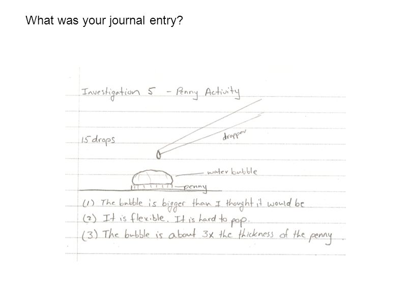 What was your journal entry?