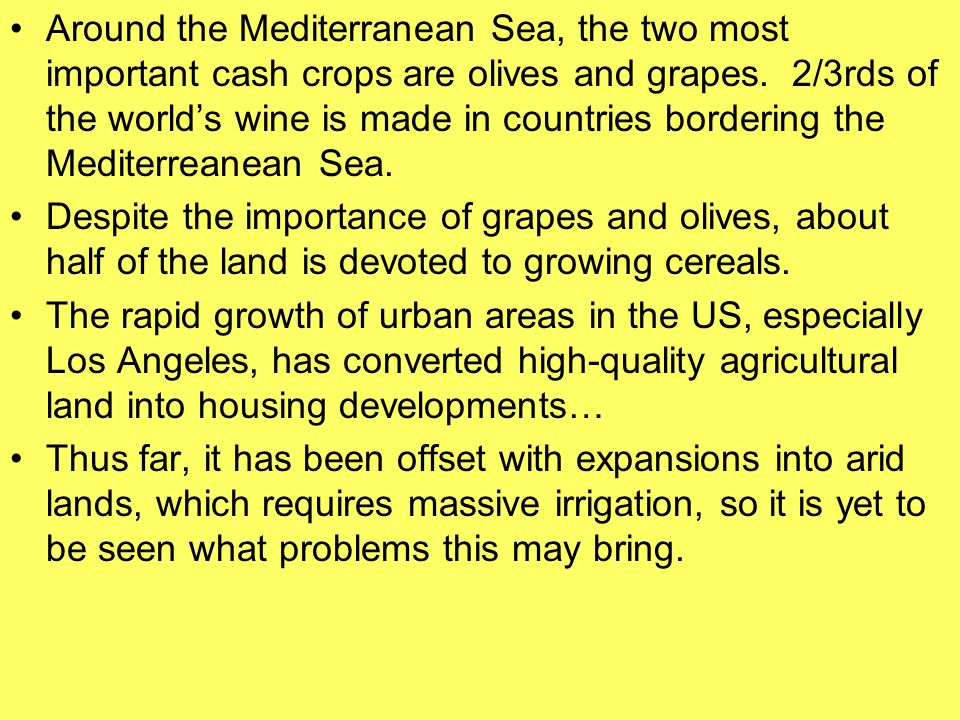 Around the Mediterranean Sea, the two most important cash crops are olives and grapes. 2/3rds of the world's wine is made in countries bordering the M