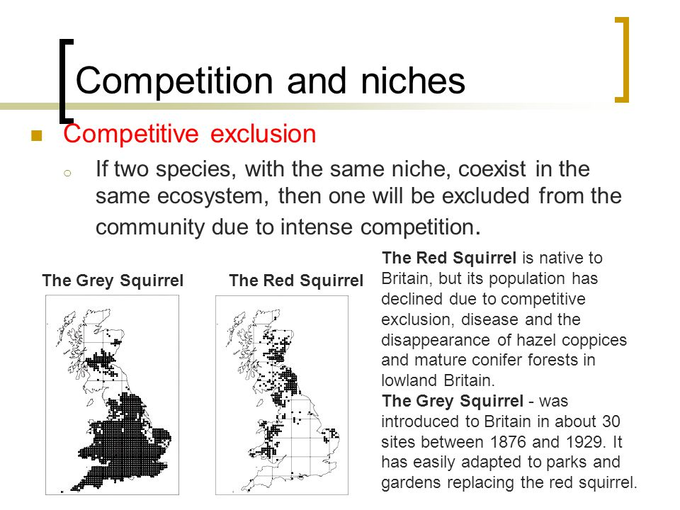 Competition and niches Competitive exclusion o If two species, with the same niche, coexist in the same ecosystem, then one will be excluded from the