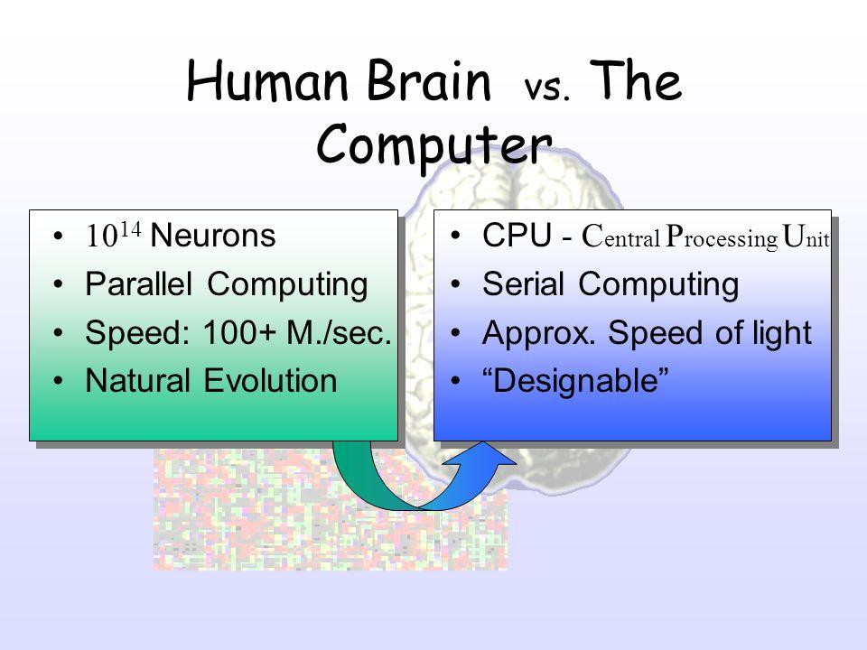Human Brain vs. The Computer 10 14 Neurons Parallel Computing Speed: 100+ M./sec. Natural Evolution CPU - C entral P rocessing U nit Serial Computing
