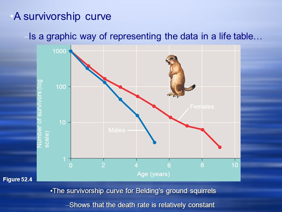 A survivorship curve – Is a graphic way of representing the data in a life table… Figure 52.4 1000 100 10 1 Number of survivors (log scale) 0 2 46 810