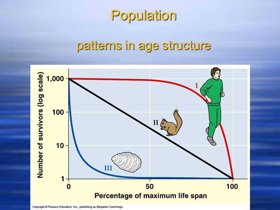 Population patterns in age structure
