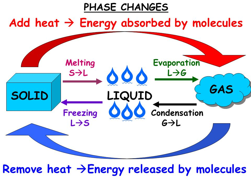 Freezing L  S Melting S  L Evaporation L  G Condensation G  L Add heat  Energy absorbed by molecules Remove heat  Energy released by molecules PHASE CHANGES SOLIDLIQUID GAS
