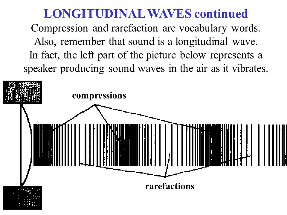 compressions rarefactions LONGITUDINAL WAVES continued Compression and rarefaction are vocabulary words. Also, remember that sound is a longitudinal w