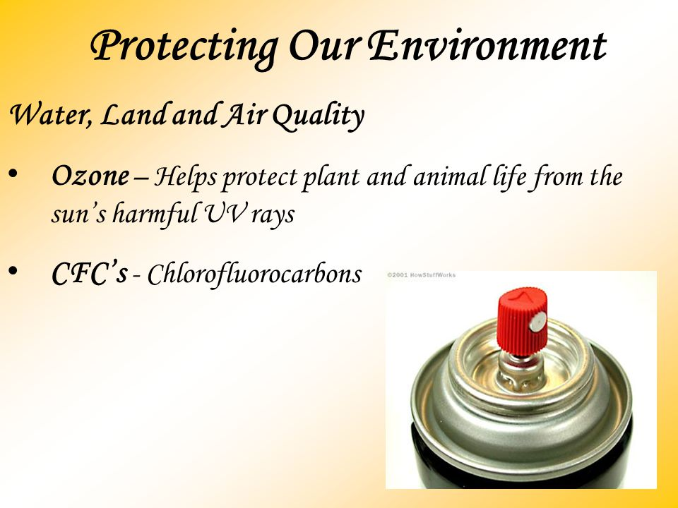 Protecting Our Environment Water, Land and Air Quality Ozone – Helps protect plant and animal life from the sun's harmful UV rays CFC's - Chlorofluoro