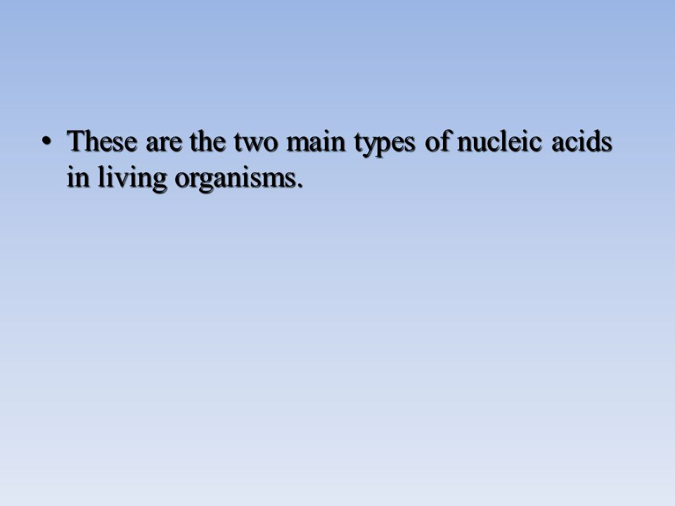 These are the two main types of nucleic acids in living organisms.These are the two main types of nucleic acids in living organisms.
