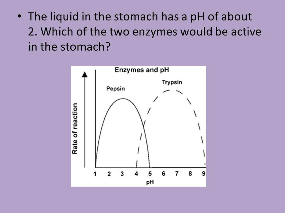 The liquid in the stomach has a pH of about 2.