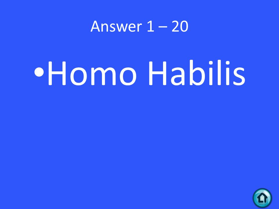 Answer 1 – 20 Homo Habilis