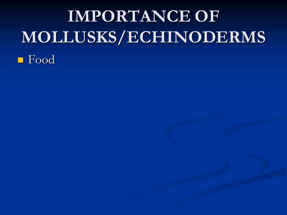IMPORTANCE OF MOLLUSKS/ECHINODERMS Food Food