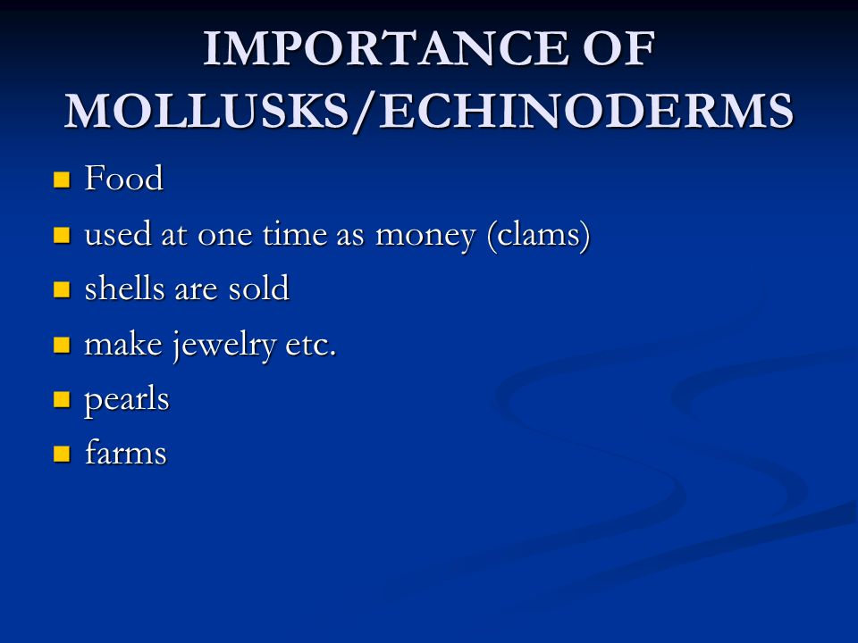 IMPORTANCE OF MOLLUSKS/ECHINODERMS Food Food used at one time as money (clams) used at one time as money (clams) shells are sold shells are sold make